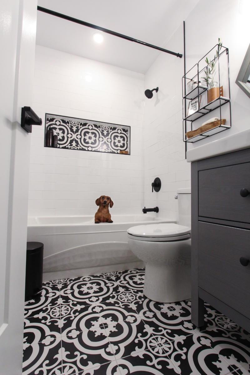 black and white patterned tile niche cute dog in bathtub
